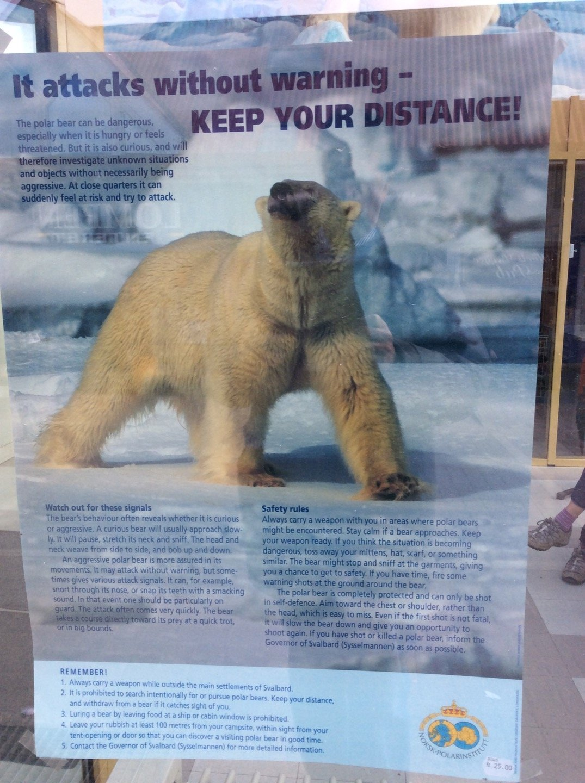 Cartel osos Svalbard